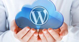 Những yếu tố cần quan tâm khi mua Hosting Wordpress